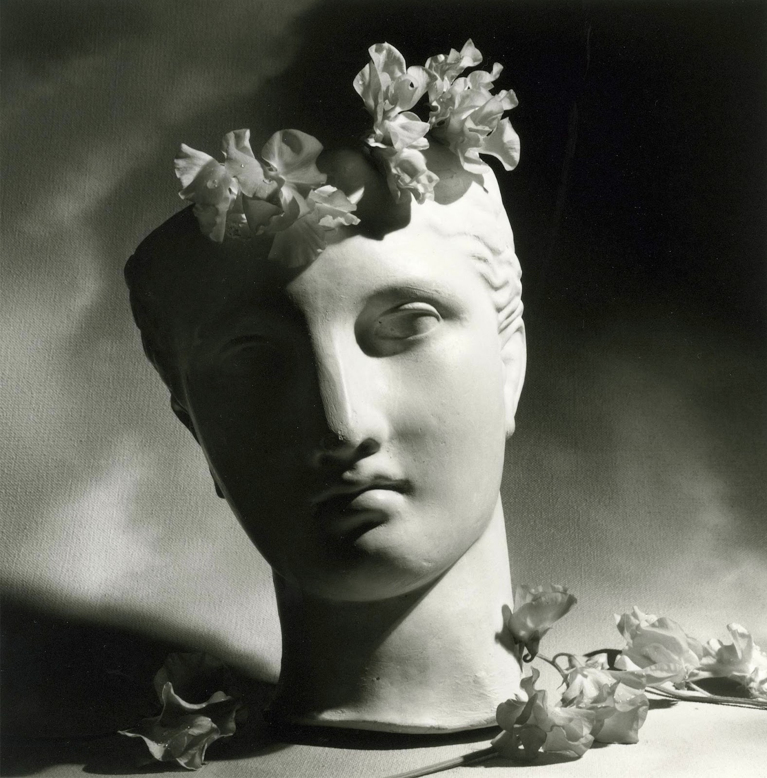 vintage photography classical head with flowers by paul horst
