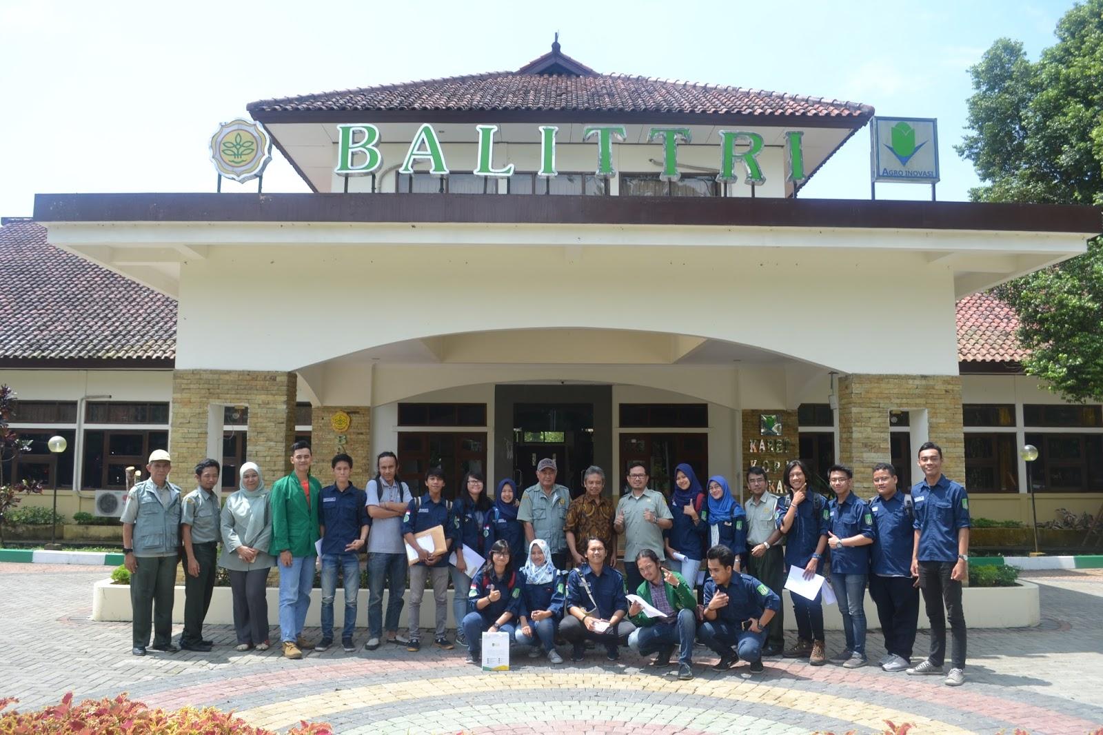 Laporan Kunjungan Lapang Ke Balai Penelitian Balai Penelitan  # Muebles Ekono Cali