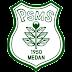 Plantel do PSMS Medan 2019
