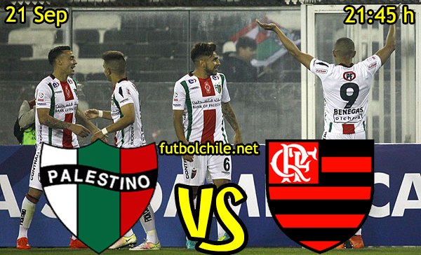 Ver stream hd youtube facebook movil android ios iphone table ipad windows mac linux resultado en vivo, online: Palestino vs Flamengo
