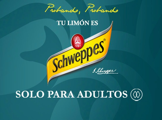 Schweppes-Limon-Zero-Dry-opinion