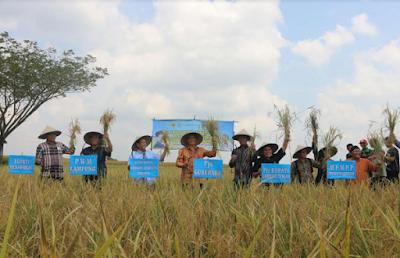 Muhammadiyah Peduli Petani dan Kedaulatan Pangan Lampung