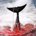 Ιαπωνία, σταματήστε τη σφαγή φαλαινών