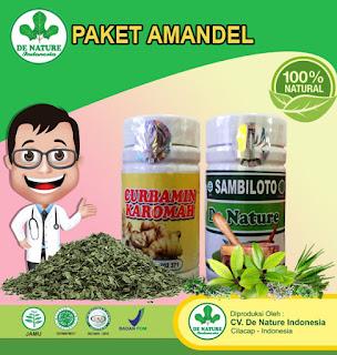 Paket Obat Amandel De Nature