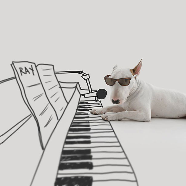 Sau khi vợ bỏ đi mang theo tất cả chỉ để lại một chú chó, anh chàng này đã nghĩ ra cách làm lại cuộc đời không thể sáng tạo hơn
