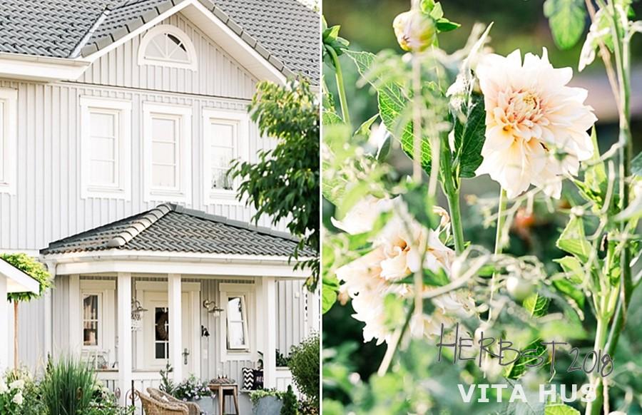 www.timberhaus.ch