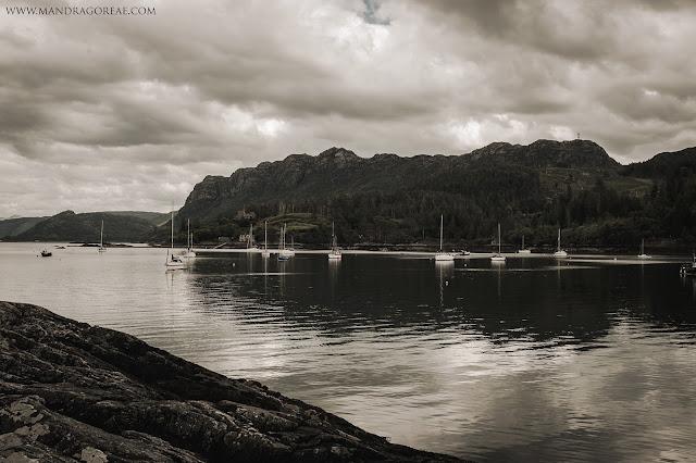 Plockton, Loch Carron view, Mandragoreae