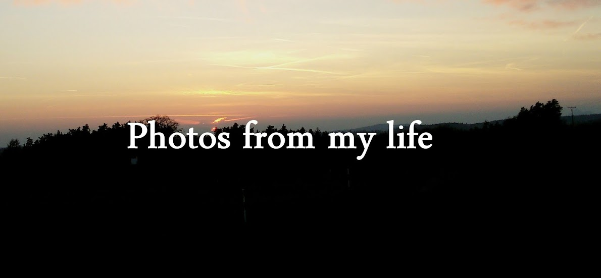 Photos from my life♥