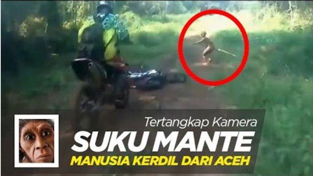 Sejarah tentang Suku Mante yang Misterius di Hutan Aceh