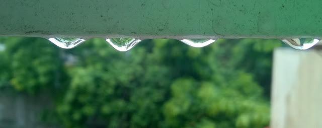 Water, Raindrops, Pune