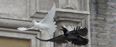 Risultato immagini per colomba piaghe di cristo