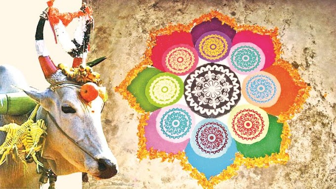 Thai Pongal: First month of the Tamil Almanac