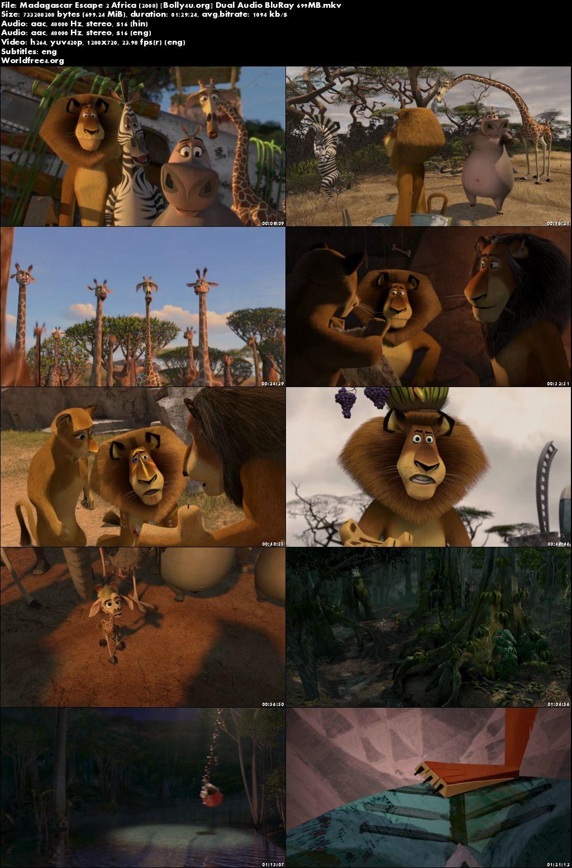 Madagascar Escape 2 Africa 2008 BRRip Hindi Dual Audio 720p Download
