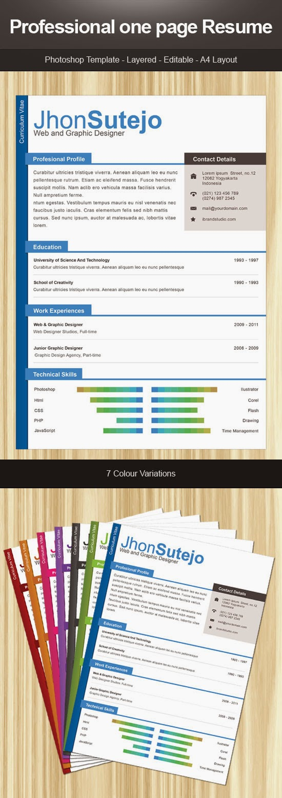 Professional One Page Resume PSD Temlate