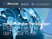 BitForexCoin situs investasi Terbaik dan masih membayar