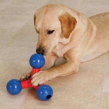 Cómo entretener al perro o al gato