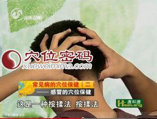 風池穴按摩 - 穴道按摩風池穴經絡圖解 | Source:xueweitu.iiyun.com