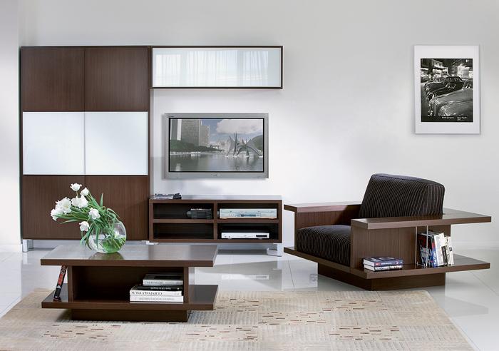 Купить мебель стенку
