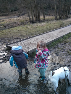 three in the puddle