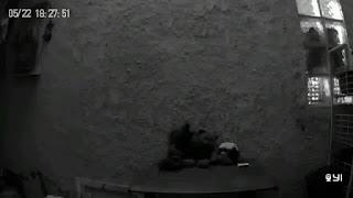 Xiaomi Yi Home Camera  Sample - Night Shot