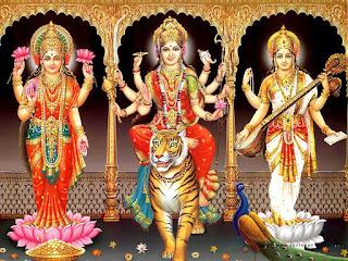 navratri-vrat-rule-hindi