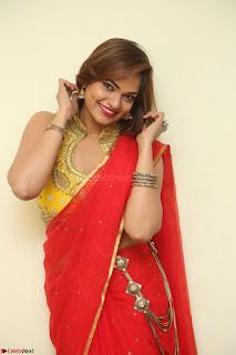 Actress Ashwini in Golden choli Red saree Spicy Pics ~  057.JPG