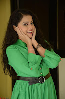 Geethanjali in Green Dress at Mixture Potlam Movie Pressmeet March 2017 072.JPG