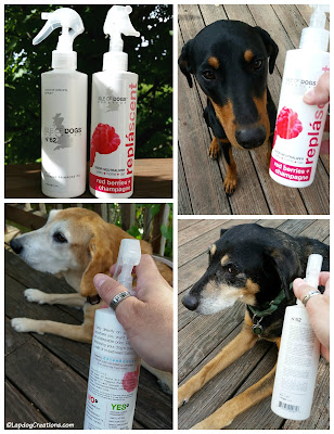 Dogs testing Isle of Dogs grooming sprays