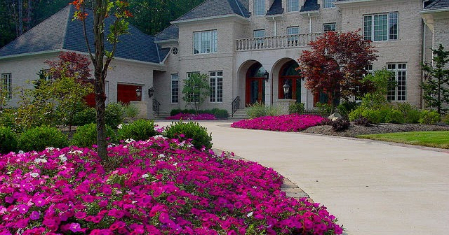Colorful Backyard Design for this Spring - BACKYARD and PATIOS