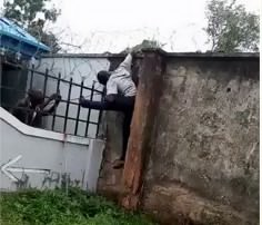 Suspected burglar electrocuted while scaling fence - Watch Video