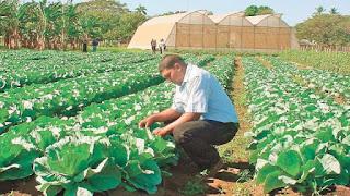La Importancia de la Agroecología