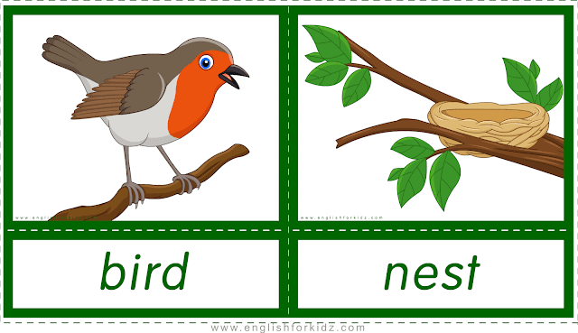 Animal homes and habitats -- bird - nest -- printable flashcards for English learners