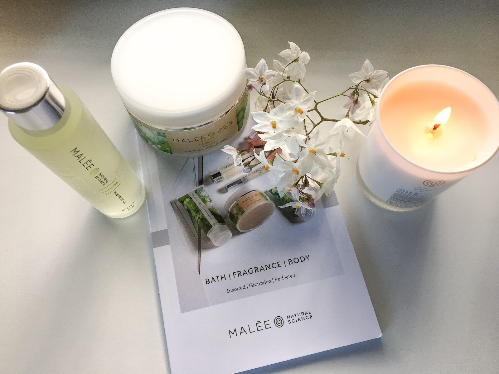 Review of MAlee