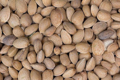 Foods To Keep Your Hair Healthy and Strong, hair loss, almond