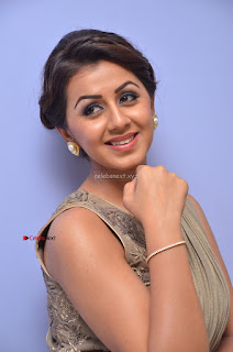 Nikki Galrani in Saree 030.JPG