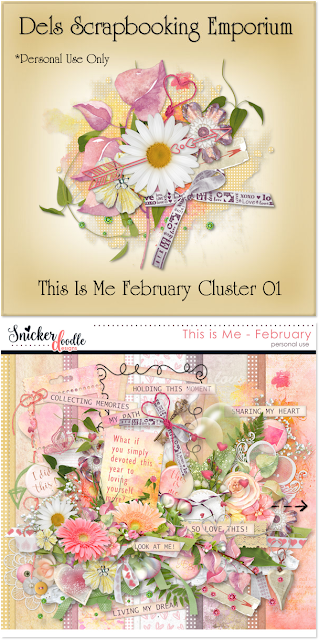 This Is Me February Cluster 01