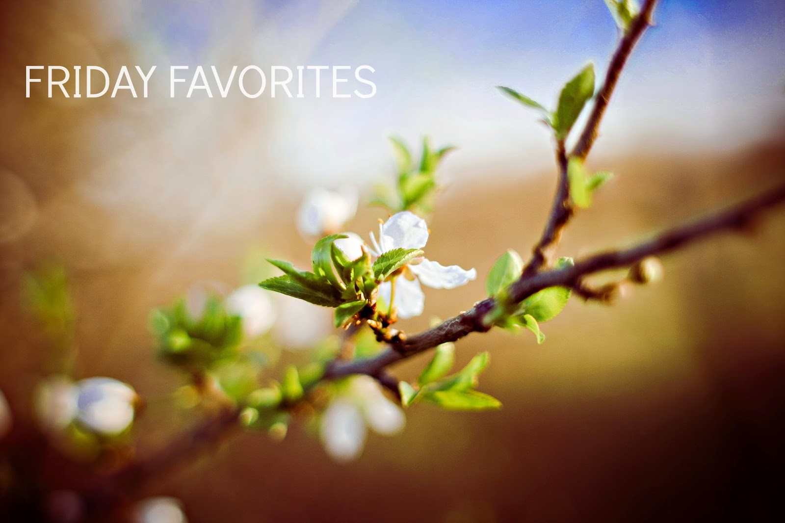 Ioanna's Notebook - Friday Favorites April 2015