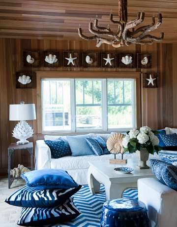 window treatment with sea life shadow boxes