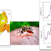 Spatio-temporal Patterns in Epidemiological Spread of Dengue and Chikungunya