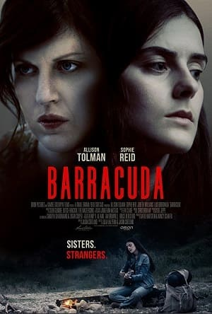 Torrent Filme Meia Irmã 2018 Dublado 1080p 720p BDRip Bluray FullHD HD completo