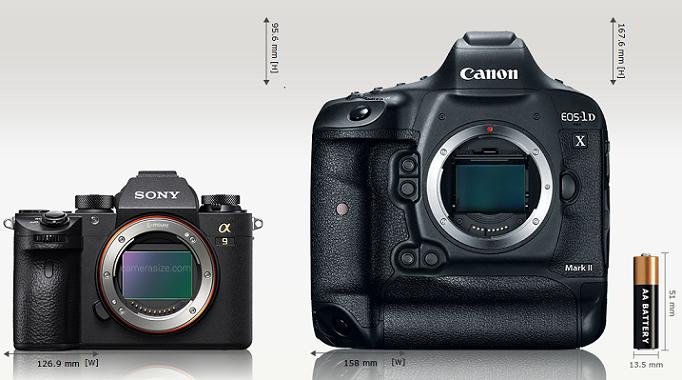Сравнение габаритов Sony A9 и Canon EOS 1D X Mark II