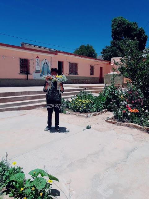 Die Blumen gedeihen dieses Jahr besonders in Esmoraca Bolivien