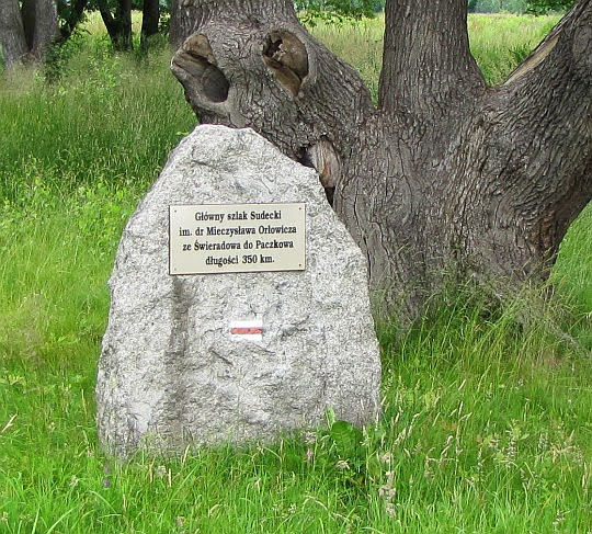 Mysłakowice. Kamień ze znakami Głównego Szlaku Sudeckiego.