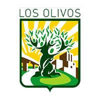 Municipalidad De Los Olivos