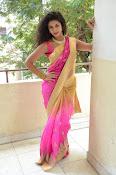 pavani new photos in saree-thumbnail-24