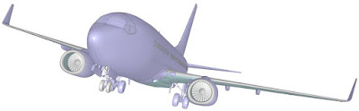 Boeing 737-700 picture 2