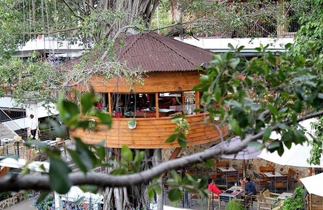 10 quán cafe biệt thự sân vườn đẹp như mơ ở nam s32g
