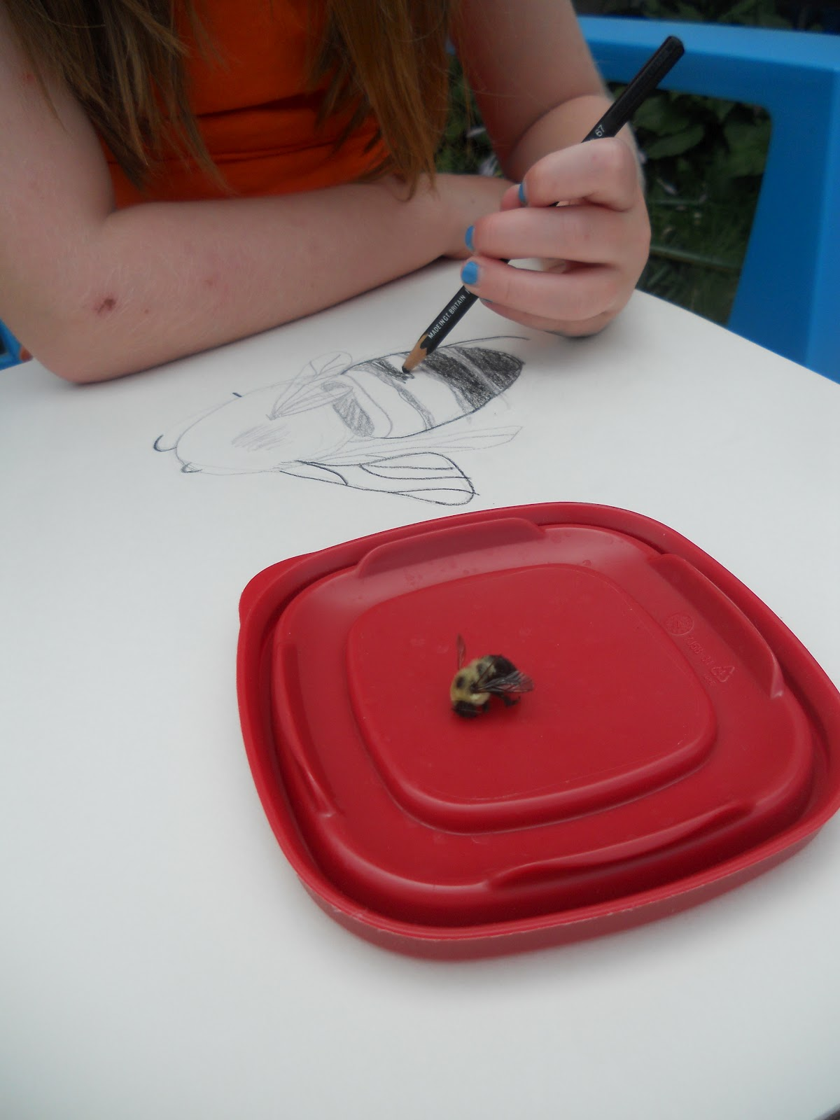 Create Art With Mrs P Sketchbooks And Drawing From Life