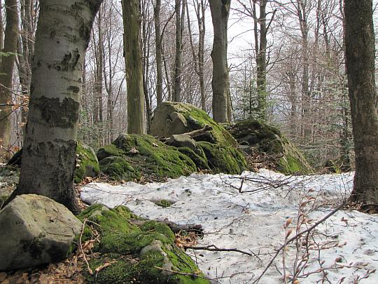 Omszałe wychodnie skalne na Magurze.