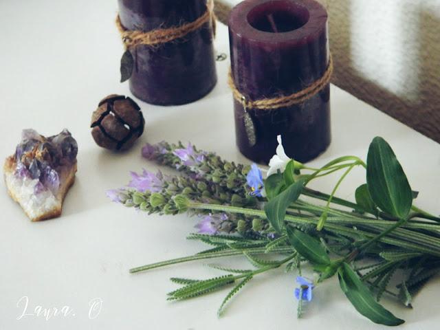 lavanda, flores, lavender, flowers